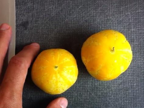 Pepino limón