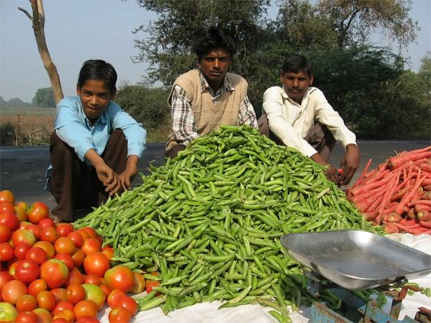 agricultura en el mundo