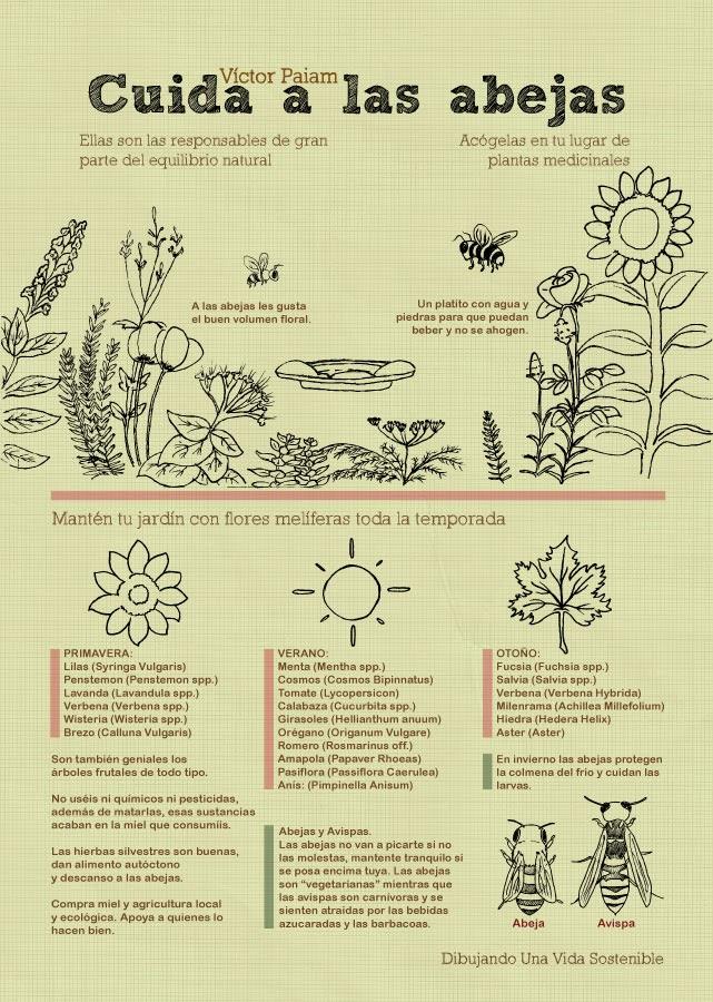 Infografía de Víctor Paiam: Cuida a las abejas. Haz click para acceder a su web.