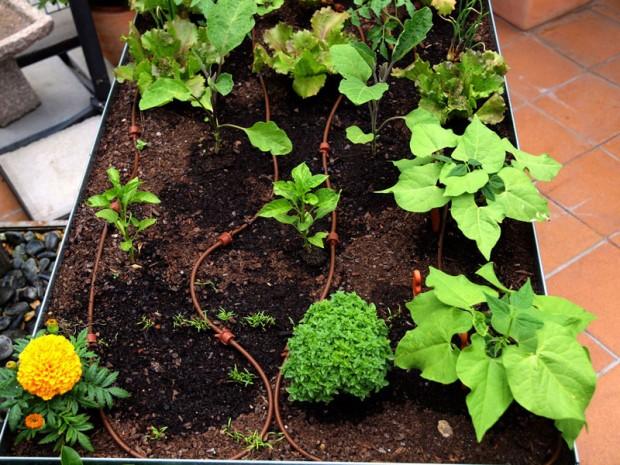 detalle mesa cultivo
