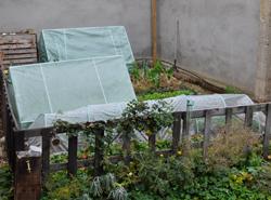 el patio en invierno